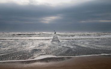 Sea (cc) garghe